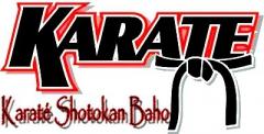 karate_belt_logo.jpg